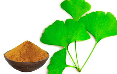 Natural Ginkgo Biloba Extract Powder For Cerebral And Microcirculation Improvement